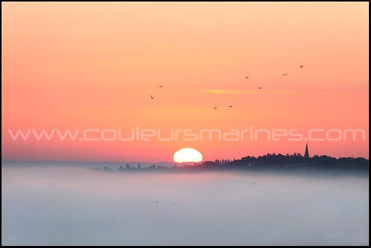 photos de la Loire dans la brume, photos de la Loire dans le brouillard, Erik Brin, Photographe à Champtoceaux, La Loire, Oudon, Champtoceaux