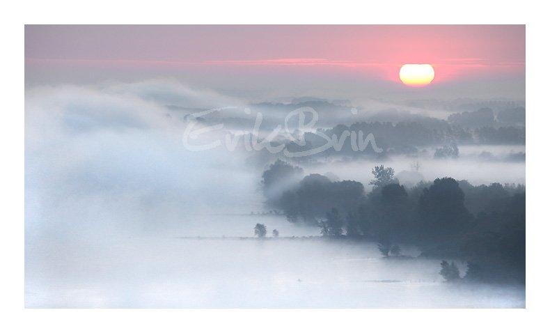 Photo, la Loire, lever du soleil sur la Loire, Champtoceaux, photos de la Loire dans le brouillard, brume, Erik Brin, photographe, Champtoceaux