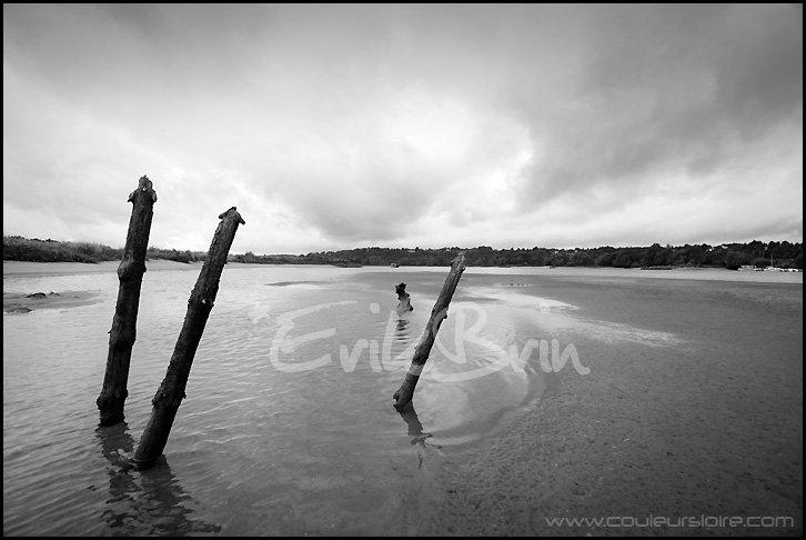 Photos noir et blanc de la Loire à marée basse prés de Nantes entre Oudon et Champtoceaux.